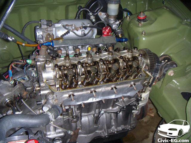 DSCN2924
